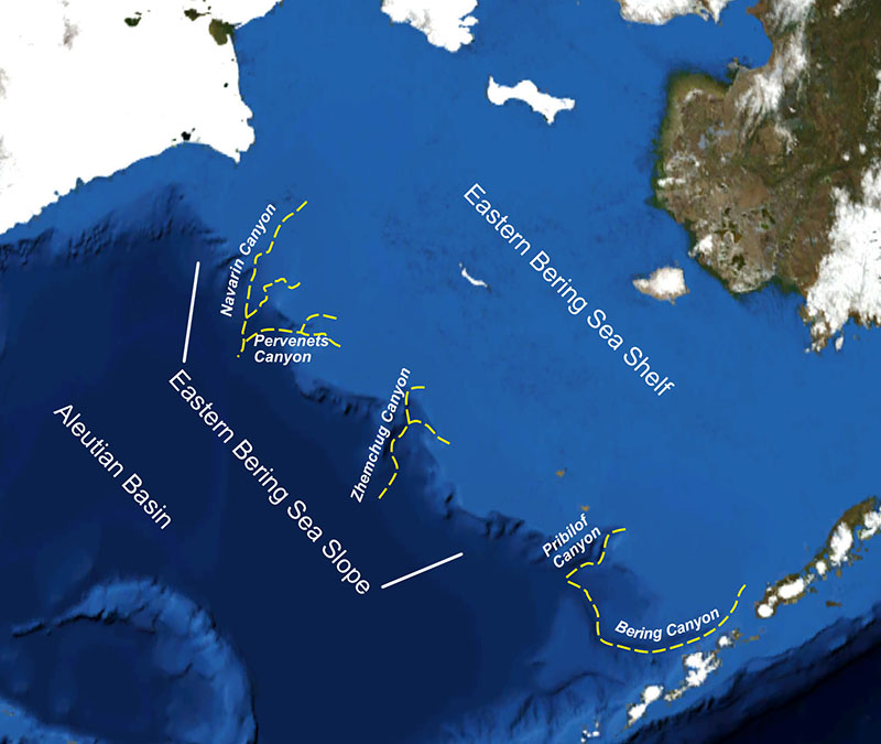Bering sea canyons marine conservation alliance for Bering sea fishing